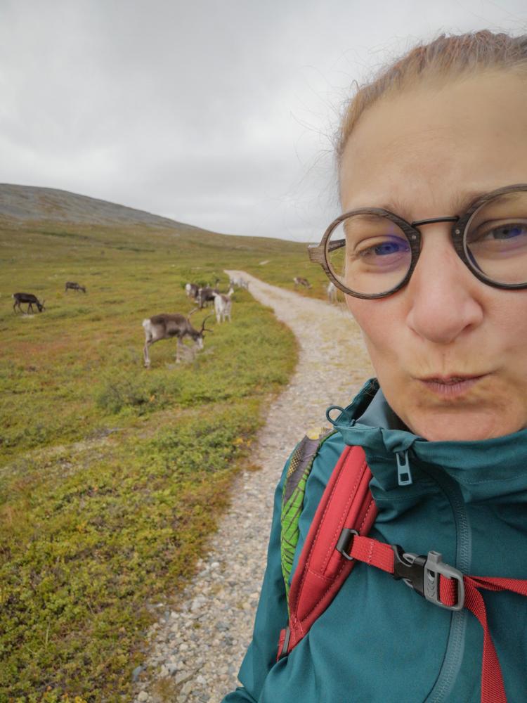 rennes en laponie finlandaise